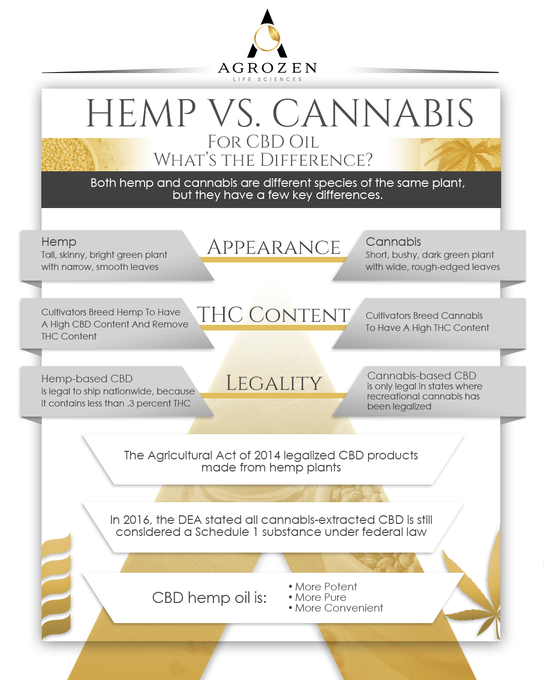 Hemp vs. Cannabis