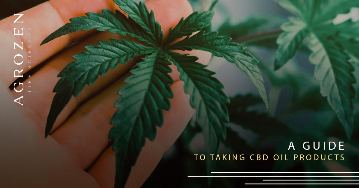 CBD hemp extract guide
